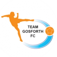 Team Gosforth FC