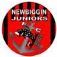 AFC Newbiggin Junior
