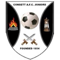 Consett Js